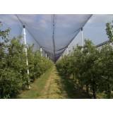 Mreža protiv tuče 1,2x100 m, rola, duplo pletena